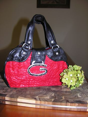 A reinvention of one of my daughter's favorite Guess handbags
