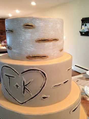 birch bark wedding cake tutorial birch bark tree tutorial cakecentral 11765