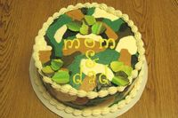 camo cake, just for practice, used Tappits letter cutters for the first time - worked perfectly.  Made modeling choc per Kristen Conairis book 'Cake decorating with modeling chocolate' for the leaves on top.