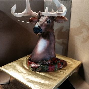 My grandson is an avid hunter and wanted a deer cake.  Thanks to the ideas shared on this website, this is what I came up with.   ps.  His ear was setting up, hence the stick in the head.