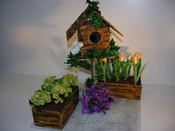 Birdhouse with tulips, hydrangers and bouganvilllia