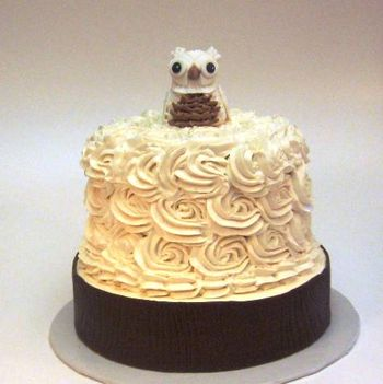 Fondant Snowy Owl, SMBC rosette cake, modeling chocolate bark.