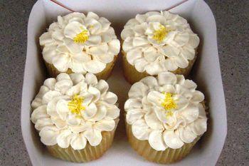 Caramel SMBC, Sylvia Weinstocks Yellow recipe, jumbo cupcakes
