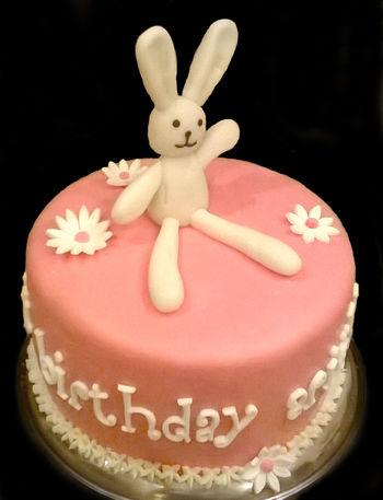 """""""Twinkle"""" the bunny"""