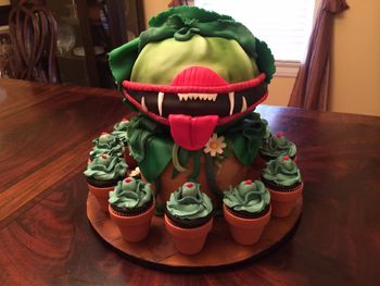 This is an Audrey II cake (and cupcakes) I made for my daughter's high school production of Little Shop of Horrors. The bottom (flowerpot) is chocolate/chocolate, and covered in fondant. The top (Audrey II) is green velvet cake with mint chocolate chip buttercream, covered in fondant.