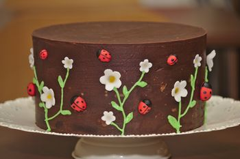 "A simple ganached 8"" chocolate cake with sugarpaste flowers and ladybirds.  The centre was hollowed out and filled with skittles for a pinata effect."