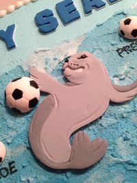 Close up of the killer soccer seal!!!