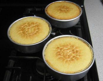 Liz Mareks vanilla cake recipe.