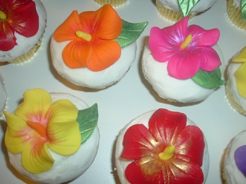 Help Need Tropical Type Flowers For Cake And Cuppies Cakecentralcom