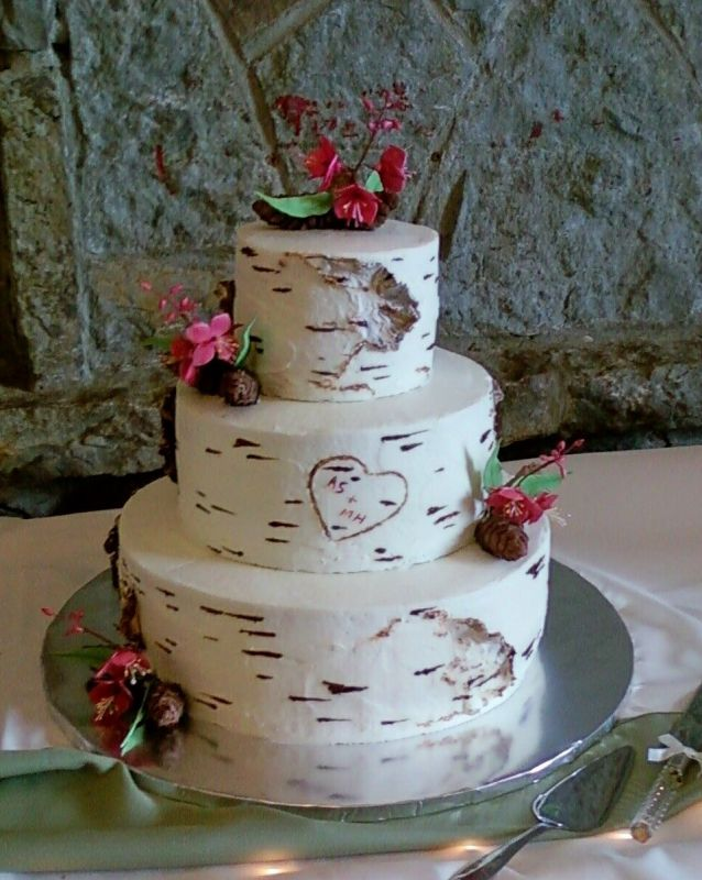 wedding cake that looks like tree trunk how do i make frosting look like a birch bark tree 26250
