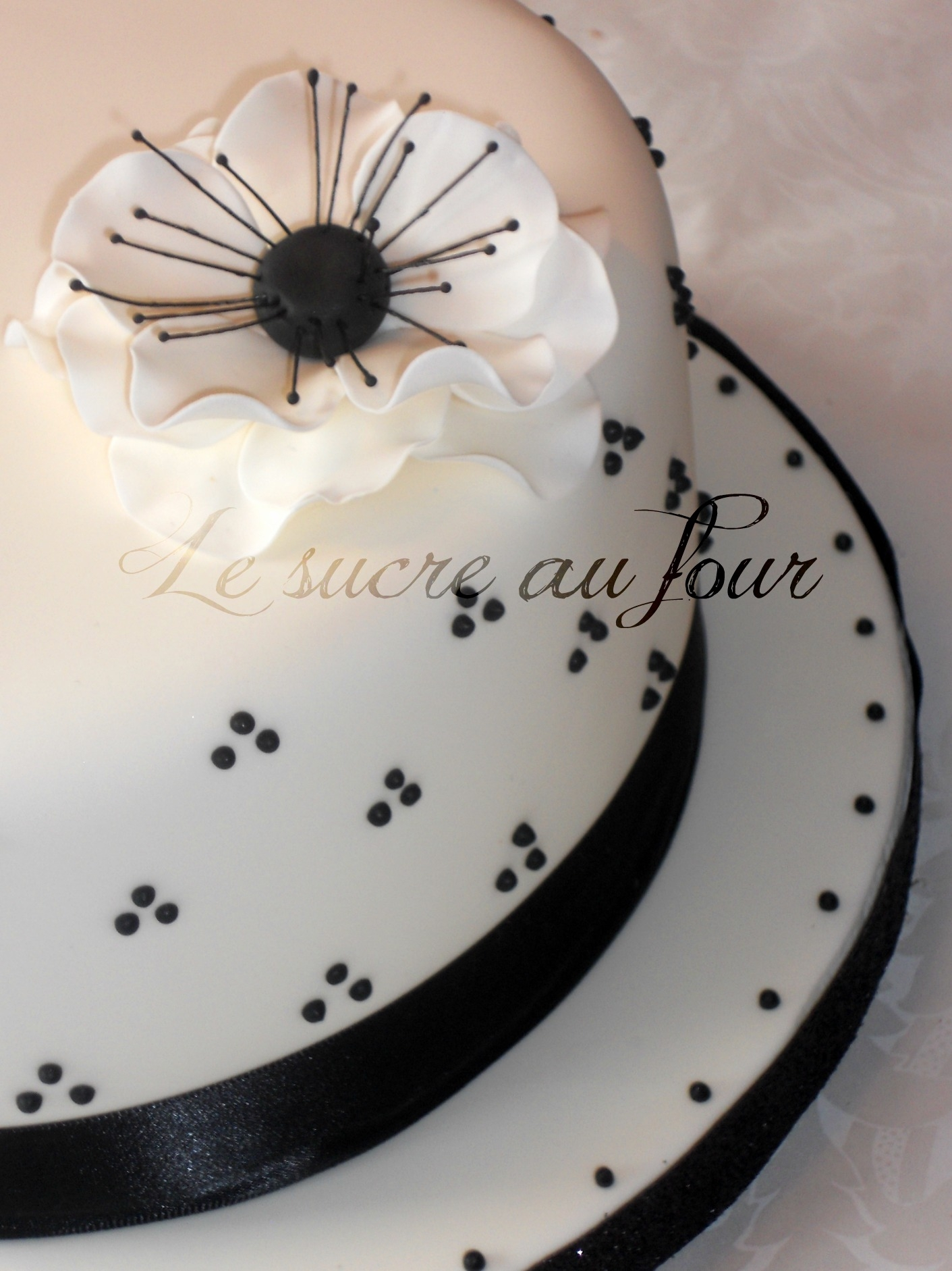 7'' cake with anemone flower, black dots on white cake