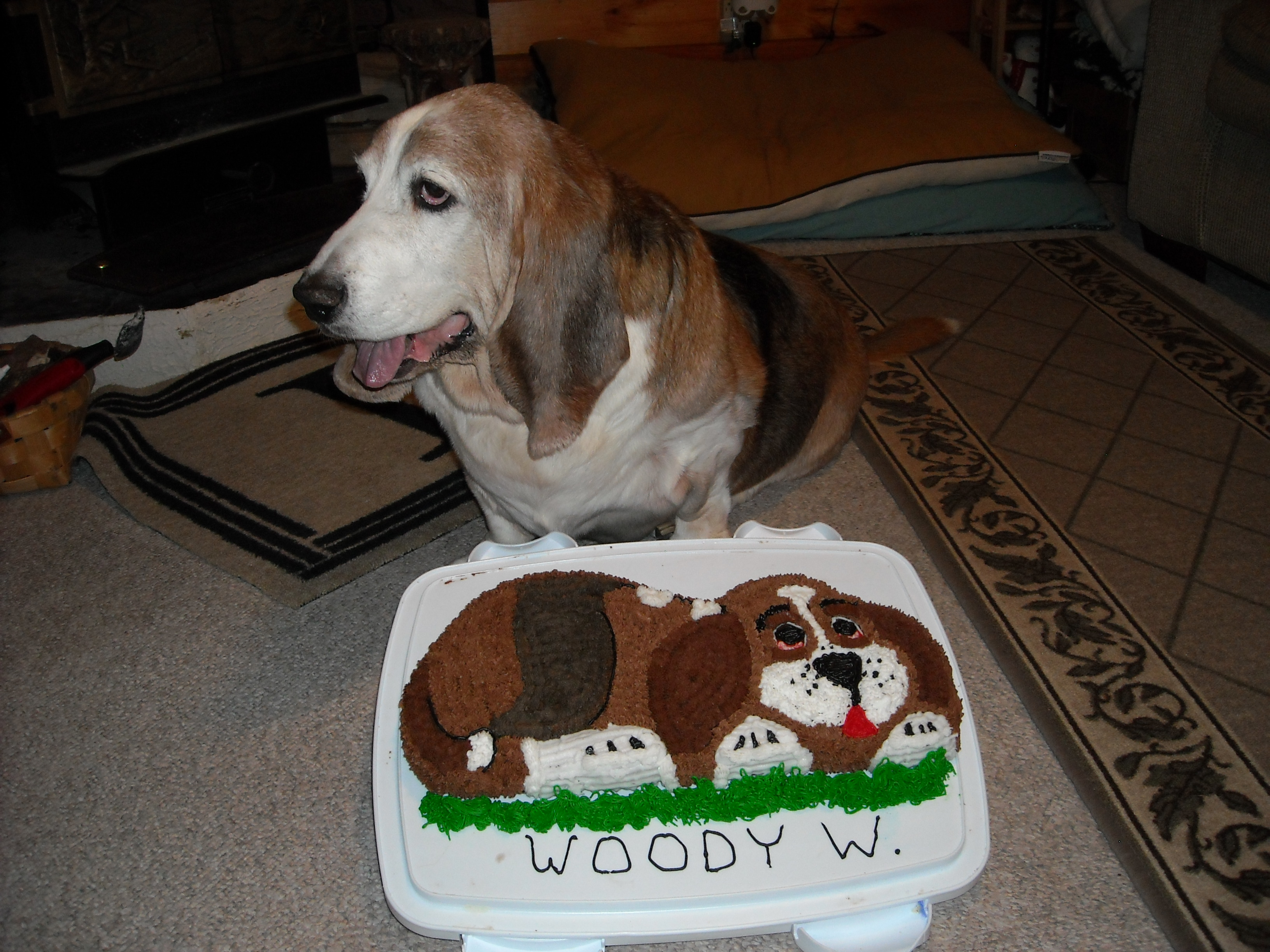 A birthday cake for our senior citizen dog, sadly it was his last.
