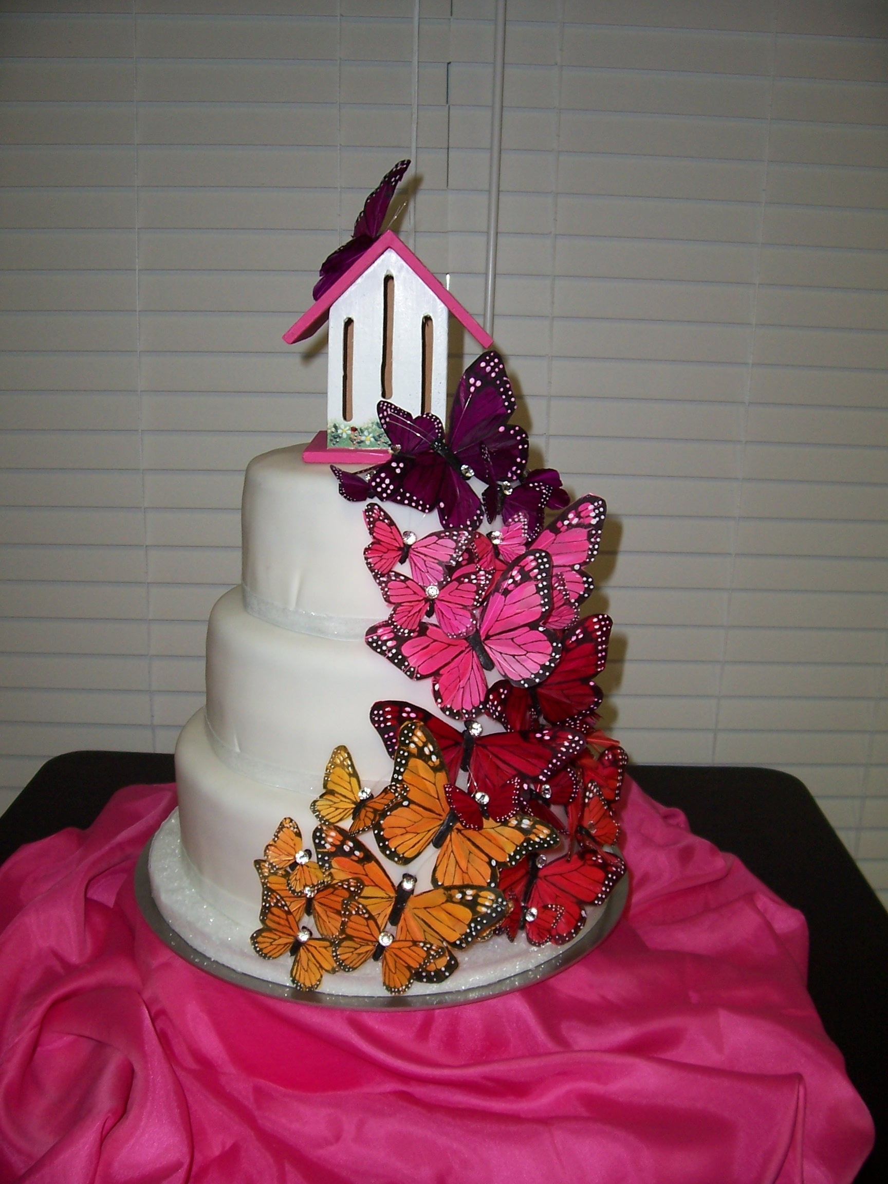 My niece wanted butterflies for her 7th birthday cake. She really loved the butterfly house for the topper.